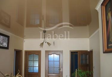 Одноуровневый натяжной потолок в зал
