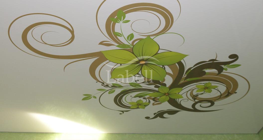 Северодонецк натяжной потолок фото